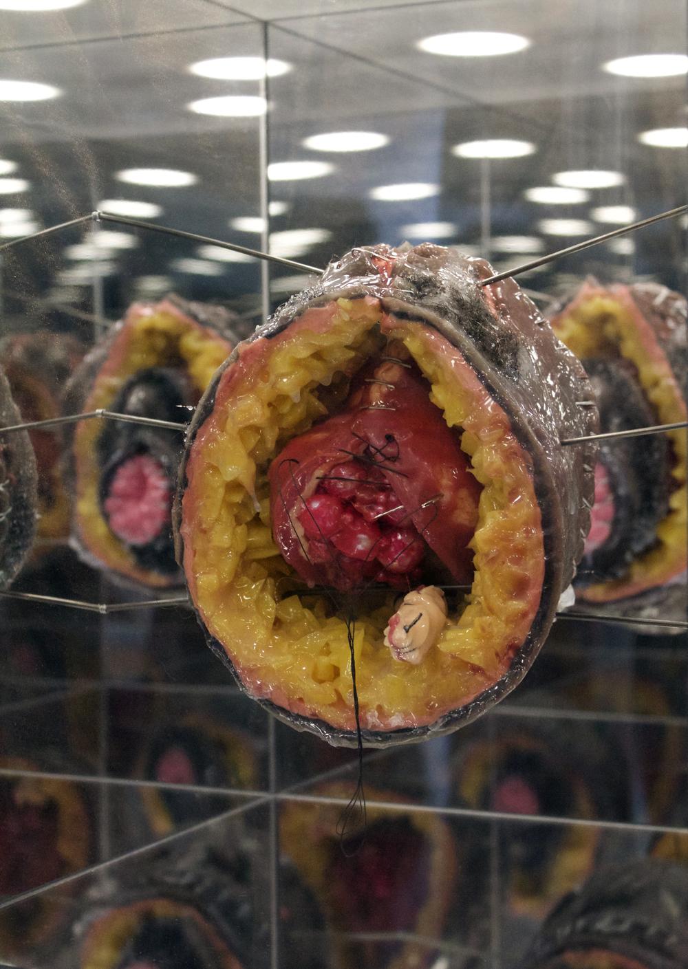 Vesico Vaginal Fistula (interior)    Silicone, Wire, Hair Weave    22x14 inches    2016