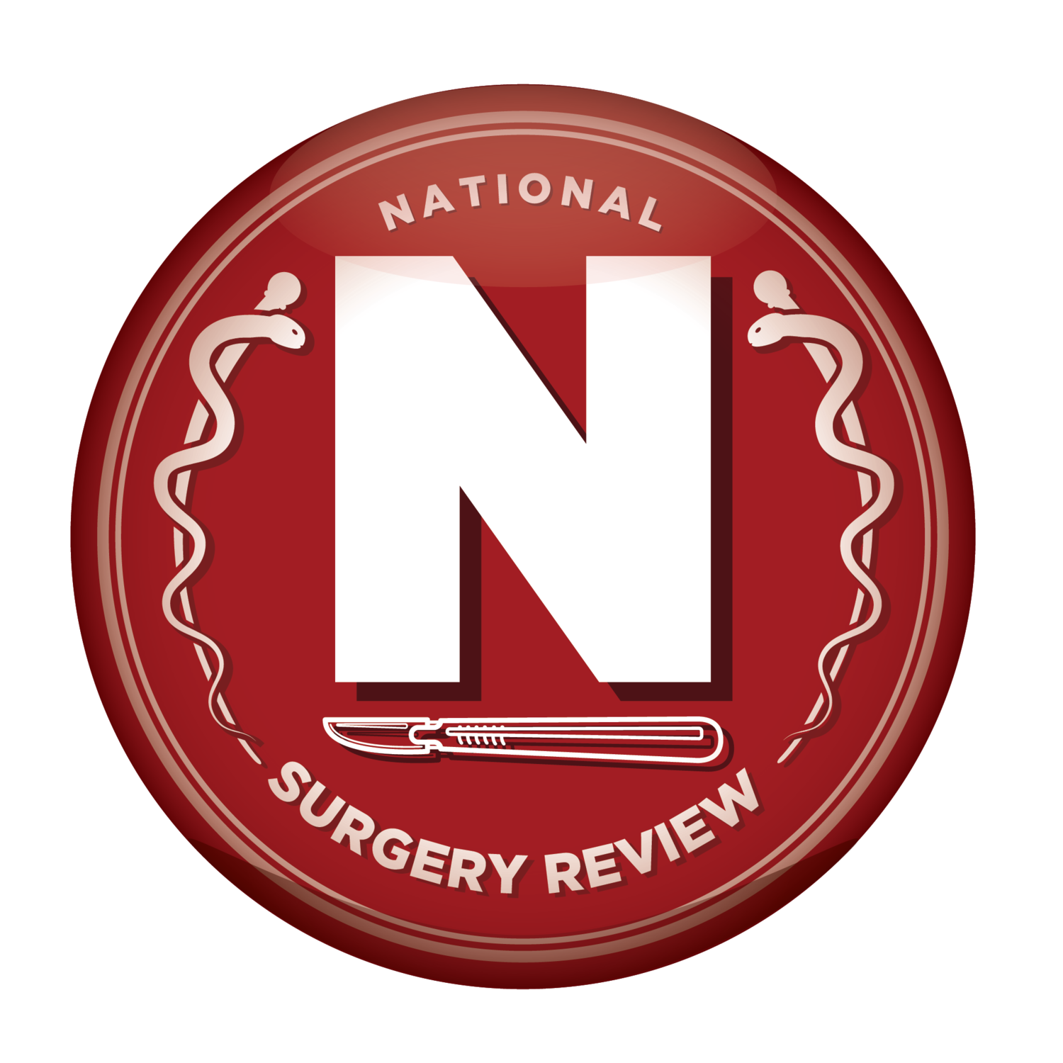 National Surgery Review