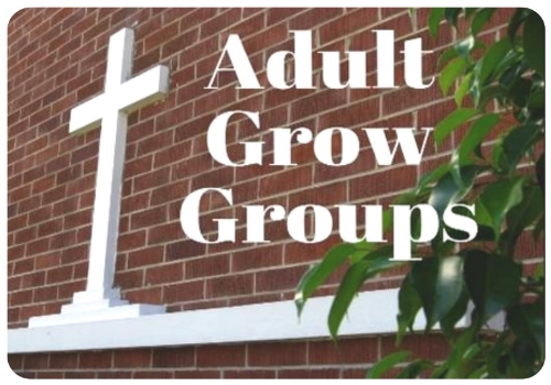 Adult Grow Groups.jpg