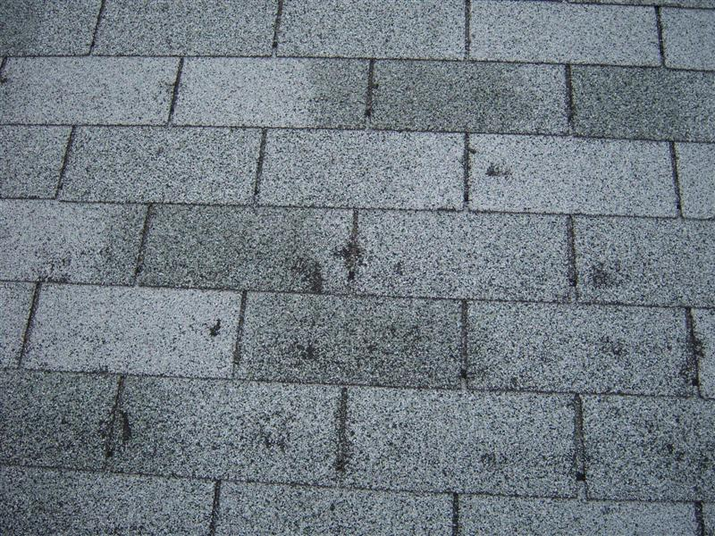 HAIL DAMAGE - ROOFING