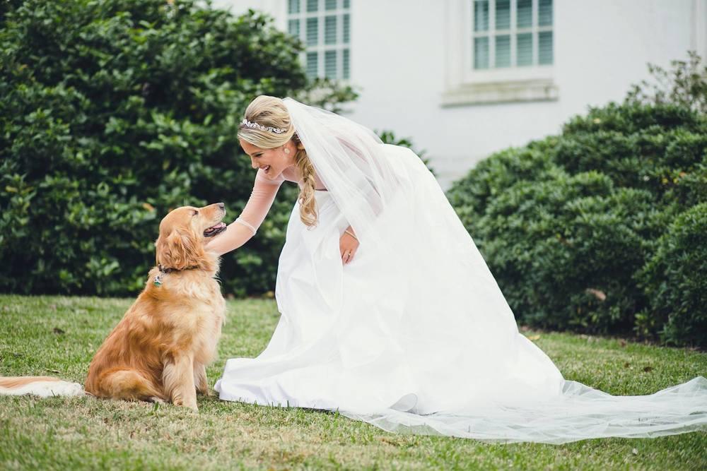Bride - Hilary Tuttle 008.jpg