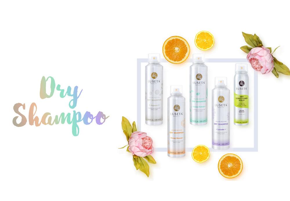lower canvas increase 30%w x 20%h Dry Shampoo.jpg