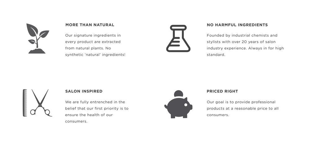 4 main features.jpg