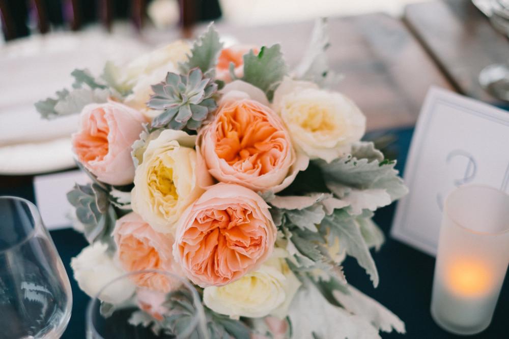 flowercloseup-1024x683.jpg
