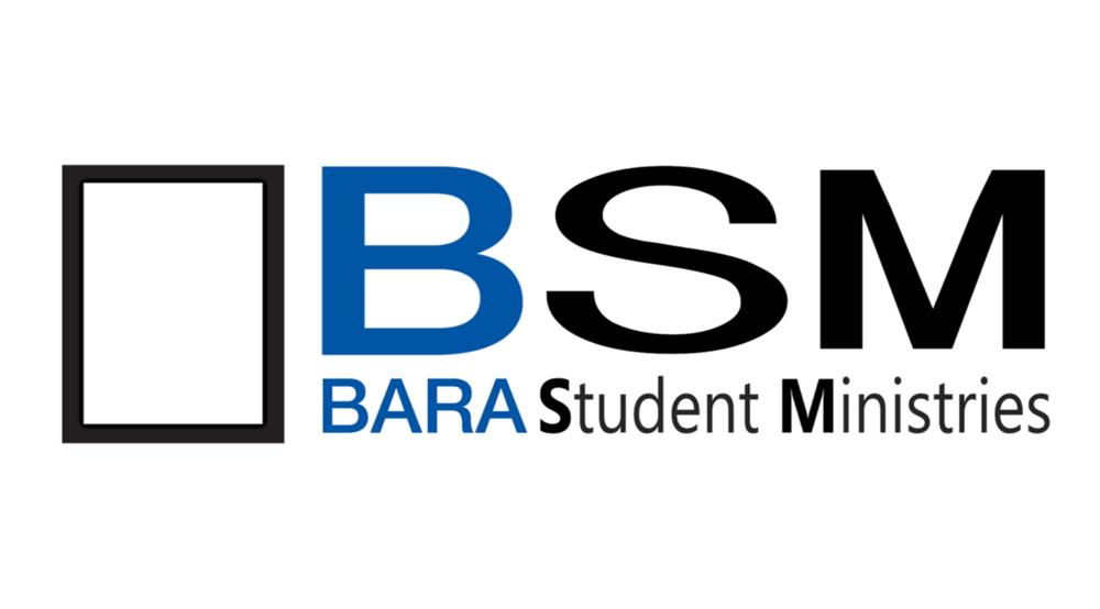 BSM Logo 2.png
