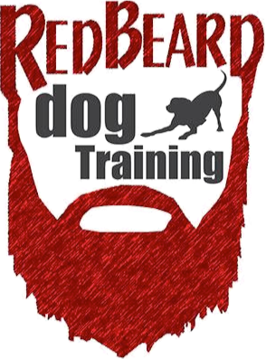 Red Beard Dog Training