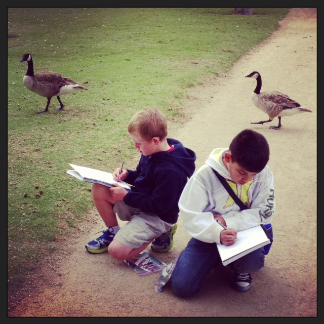 drawing geese at el estero lake.JPG