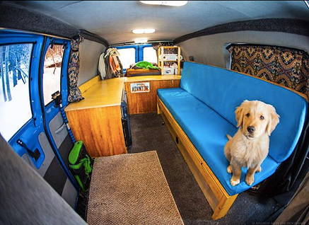 This is @kickerdogmuse. And this is the inside of the Ford 4x4 van that Kicker's owner @andrew__muse built out for them to live in.  As a multi-sport athlete and photographer, Andrew has worked hard to make his lifestyle his profession. To many, it looks like he's living the dream. And in many ways he is. But not so long ago, Andrew got into a car accident that killed his best friend and destroyed the time home they lived in. He lost everything and it was a nightmare, one he wishes never happened. His story is a good reminder to slow down and treasure the time you have. Read Andrew's story to learn how his life changed in an instant and how's he's been able to rebuild it to include a new sidekick and a custom-designed adventure rig. (link in bio) 📷 @andrew__muse