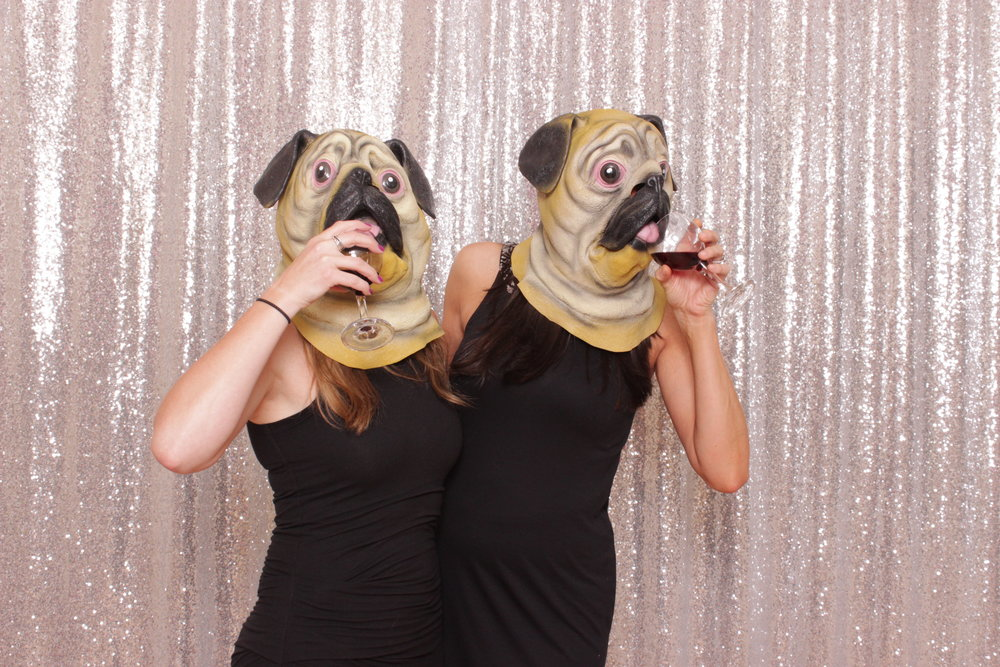 chico-pug-photo-booth-prop-wine-funny