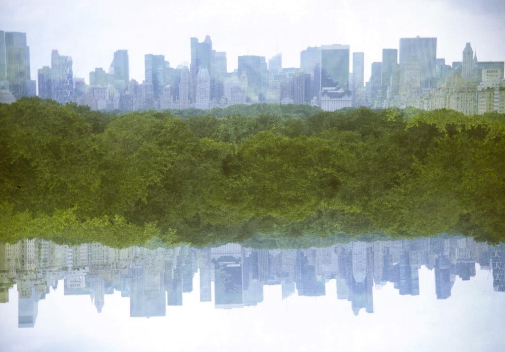 Skyline fr Met Roof038.jpg