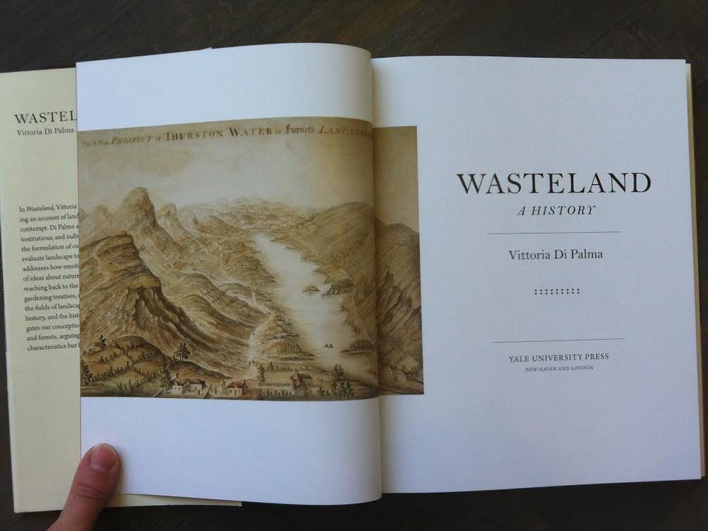 Wasteland: A History  by Vittoria Di Palma