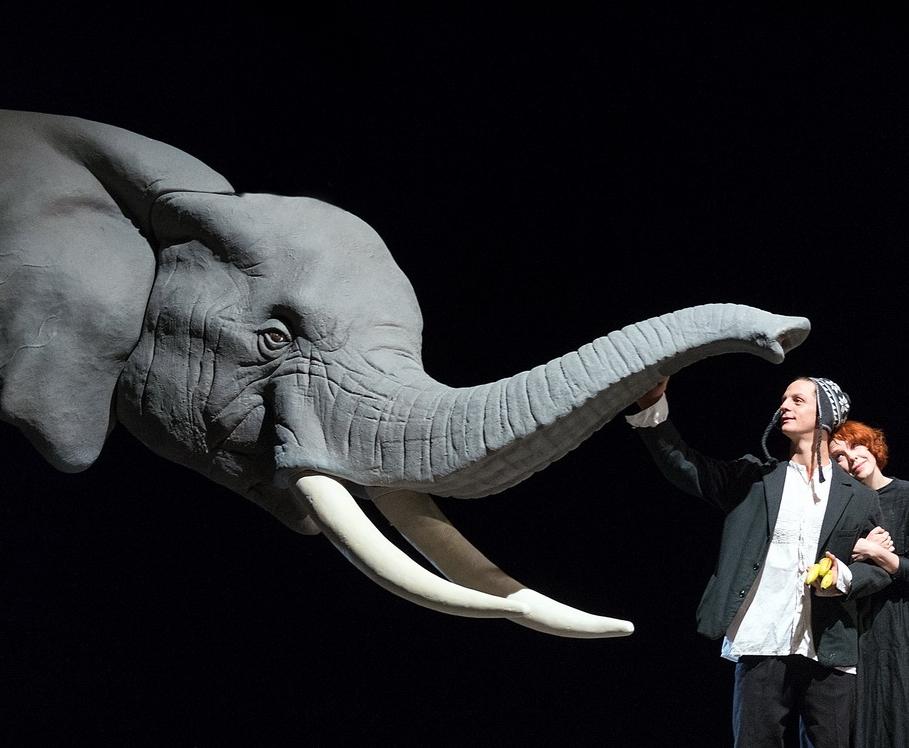 Elefantöses © Reinhard Werner/Burgtheater