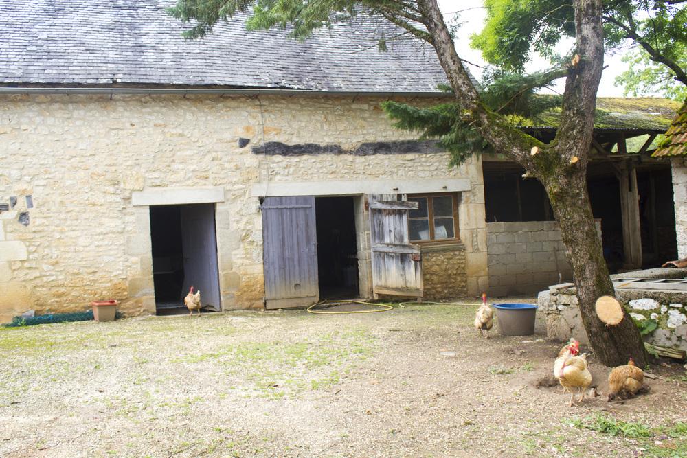 June_2013_France_Dordogne_Gouffre_de_Padirac_0596.jpg