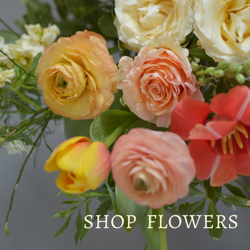 Fleur De Lis Fresh Flowers