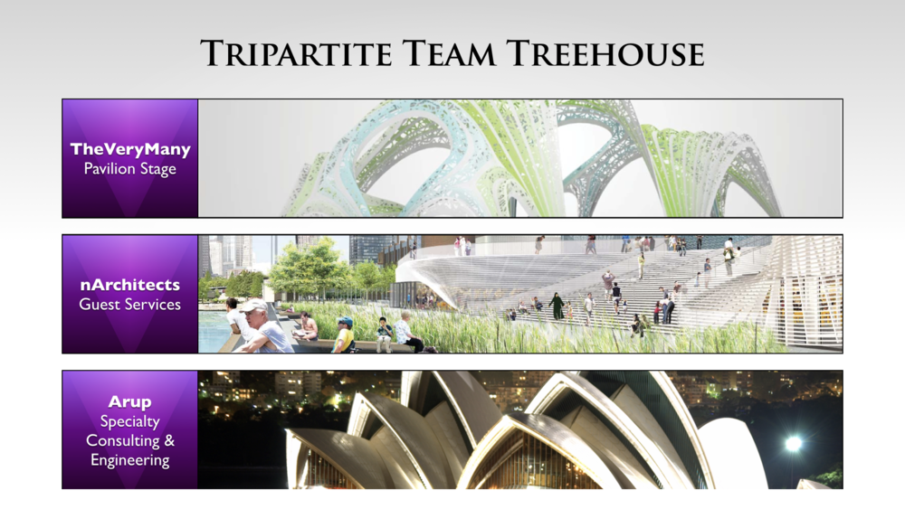 Treehouse Amphitheater Desing Team Selection copy.023.png