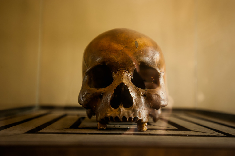 A human skull, one of hundreds of thousands prisoners who never made it out of the S-21 prison, now Tuol Sleng Genocide Museum in Phnom Penh, Cambodia, on December 6, 2013.  Copyright © 2013 Art Zaratsyan