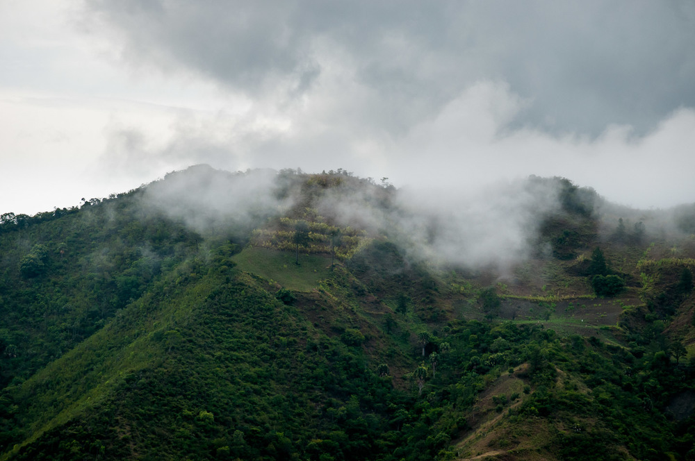 A foggy mountain top near the village of Los Guanos, showing off one of many restored forests in the province of San José de Ocoa by ADESJO. Three decades ago most hills in the area were treeless and dry, now the province is one of the greenest in Dominican Republic. Planting of just 1 hectare of trees yields 30 hectares of natural reforestation, accelerated as dried out water springs come back to life turning the area into a lush forest. July 1, 2014.  Copyright © 2014 Art Zaratsyan