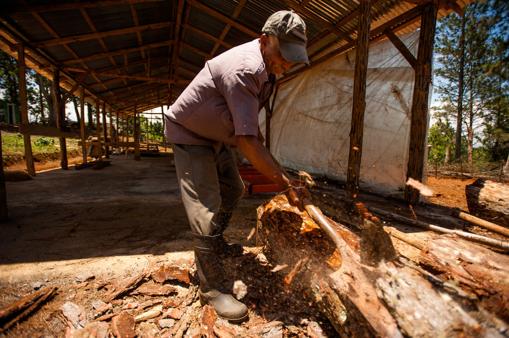 Miguel Bertrez, member of community of Derrumbado in San José de Ocoa, uses a shovel to clear the bark of a pine log at a sustainable lumber yard project by ADESJO. The wood cutting machinery for this project was granted to ADESJO and the community by Food and Agriculture Organization of United Nations (FAO) worth more than 2,500,000 pesos in equipment and training. 20% of proceeds from this lumber yard will benefit the members of the local community, who will also be able to purchase wood at half price. The yard is expected to produce more than 270,000 ft of wood per year, for which there is a large market in the area. Dominican Republic on July 10, 2014.  Copyright © 2014 Art Zaratsyan
