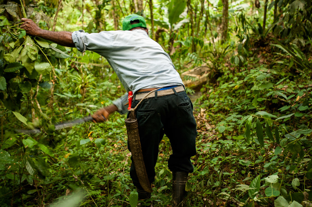 Niro Rosario from La Bocaina community in San José De Ocoa, Dominican Republic, clears the path through the jungle toward the hydro micro-plant powering the area. July 3, 2014.  Copyright © 2014 Art Zaratsyan