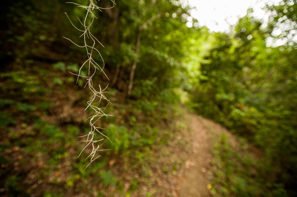 The way to the hydro micro-plant powering Los Martinez, San José De Ocoa, Dominican Republic. July 4, 2014.  Copyright © 2014 Art Zaratsyan