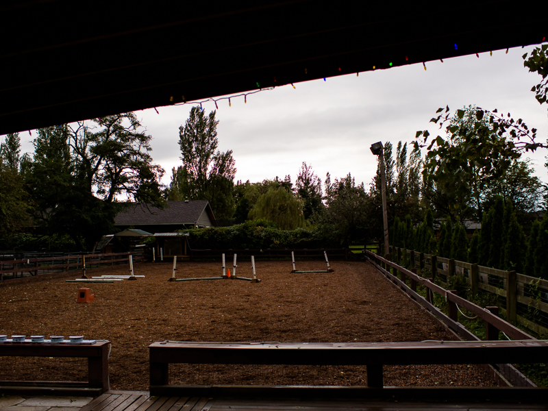 A patch of land serving as riding grounds and a small obstacle track at Southlands Heritage Farm, Vancouver, BC, Canada on September 29, 2013. Photo: Art Zaratsyan