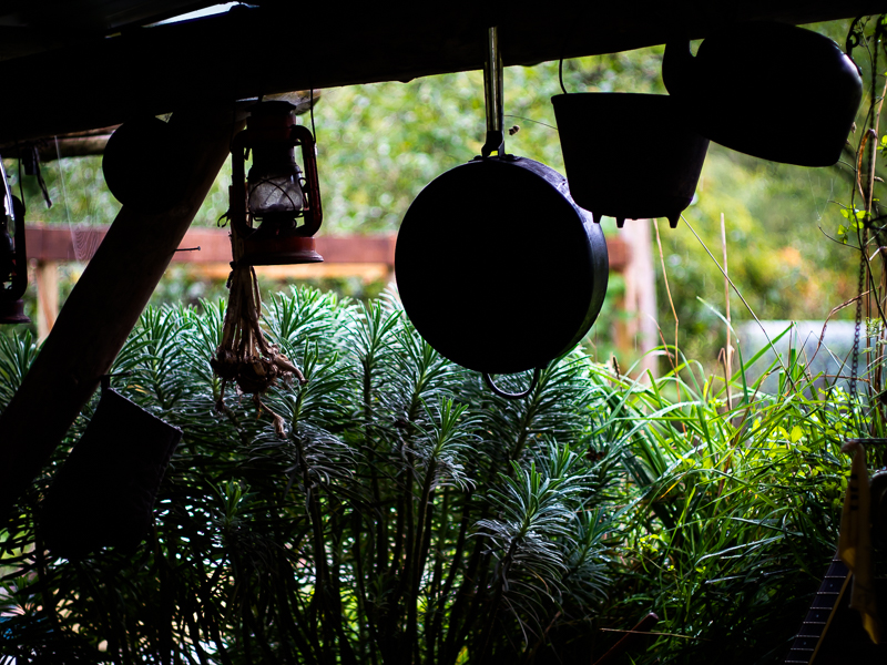An old kerosene lamp and cooking pots hang off the roof support beam in a shed at Southlands Farm, Vancouver, BC, Canada on September 29, 2013. Photo: Art Zaratsyan