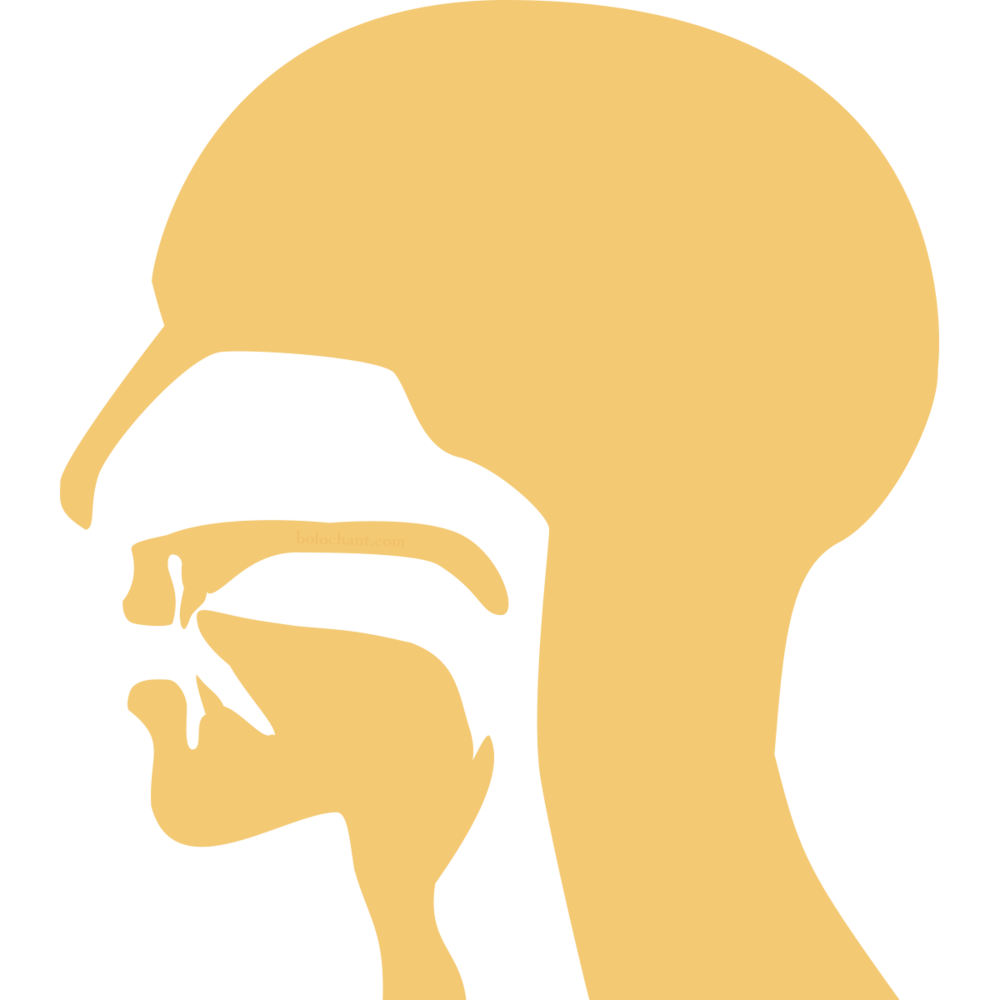 Dental Mouth Position