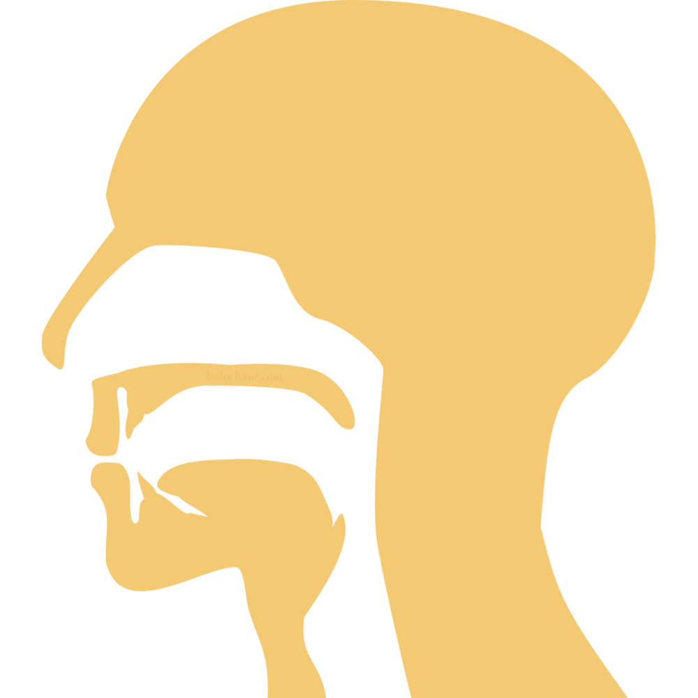 Labial Mouth Position