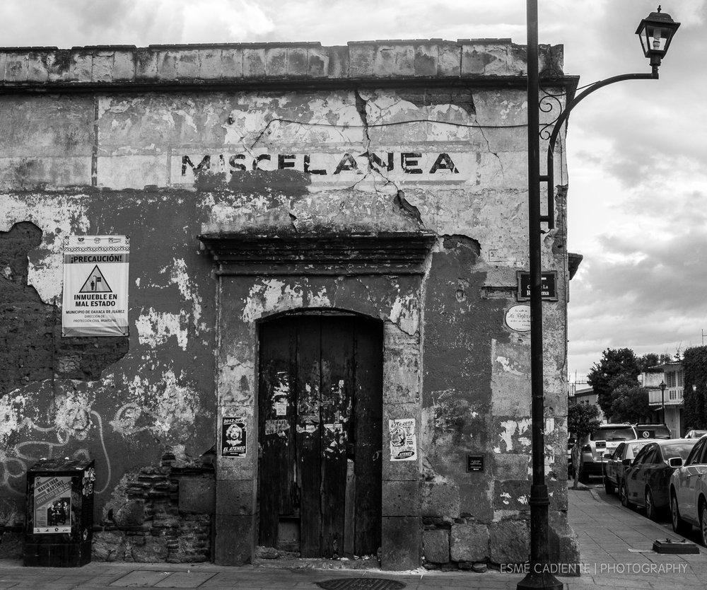 13Feb_Oaxaca1_455.jpg