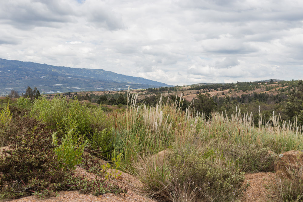 The deserty foothills of the Andes in between San Gil and Villa De Leyva