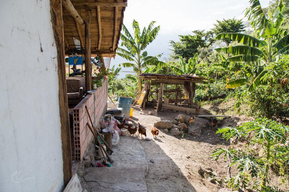 17Dec_Colombia_1041.jpg