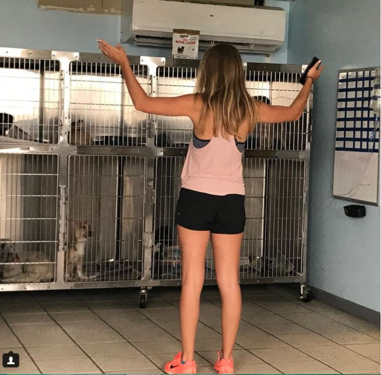 Caroline telling all the dogs we had just pulled from the shelter how amazing their lives are going to be!