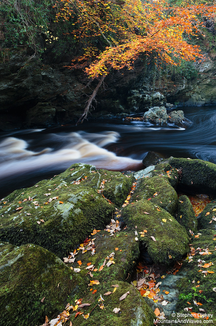 Autumn Overhang, River Roe - Northern Ireland Landscape Photography by Stephen Dickey.  Canon 6D, Canon 24-105mm L @ 24mm, ISO100, 13s @ f11, Lee 105mm Polariser.