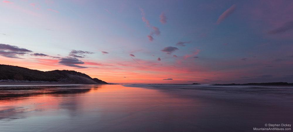 Whiterocks Beach Pinks, County Antrim, Northern Ireland
