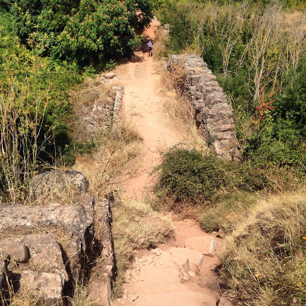 The Roman road remains along this not of the Camino