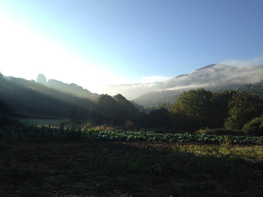 Breathtaking light filters in serene valleys outside of Triacastela.