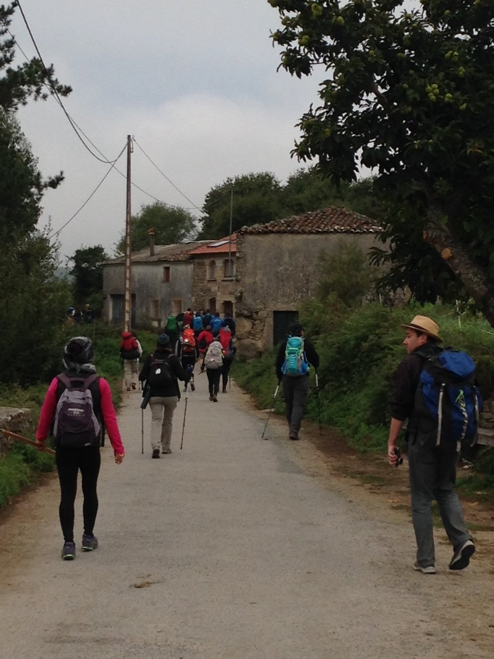 The last 100 k makes for a very crowded camino. It's a different experience than the first 600 kilometers and it requires an attitude adjustment. Galicia is so beautiful in my opinion, though, it makes the shock of sharing the way a little gentler. I tend to always be trailing behind Mike.
