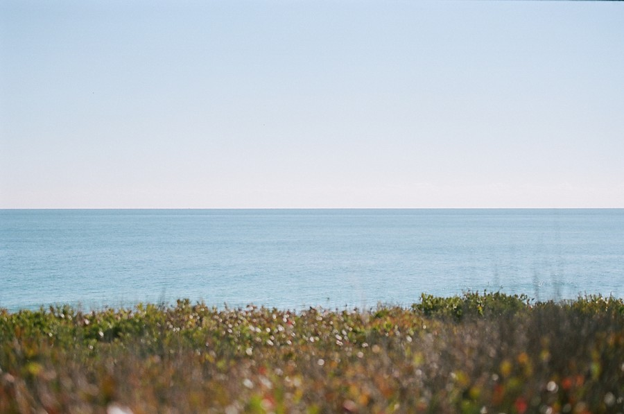 Sole_East_Montauk_Wedding_MS_01.jpg