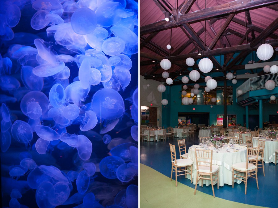 Maritime_Aquarium_Wedding_BR_35.jpg