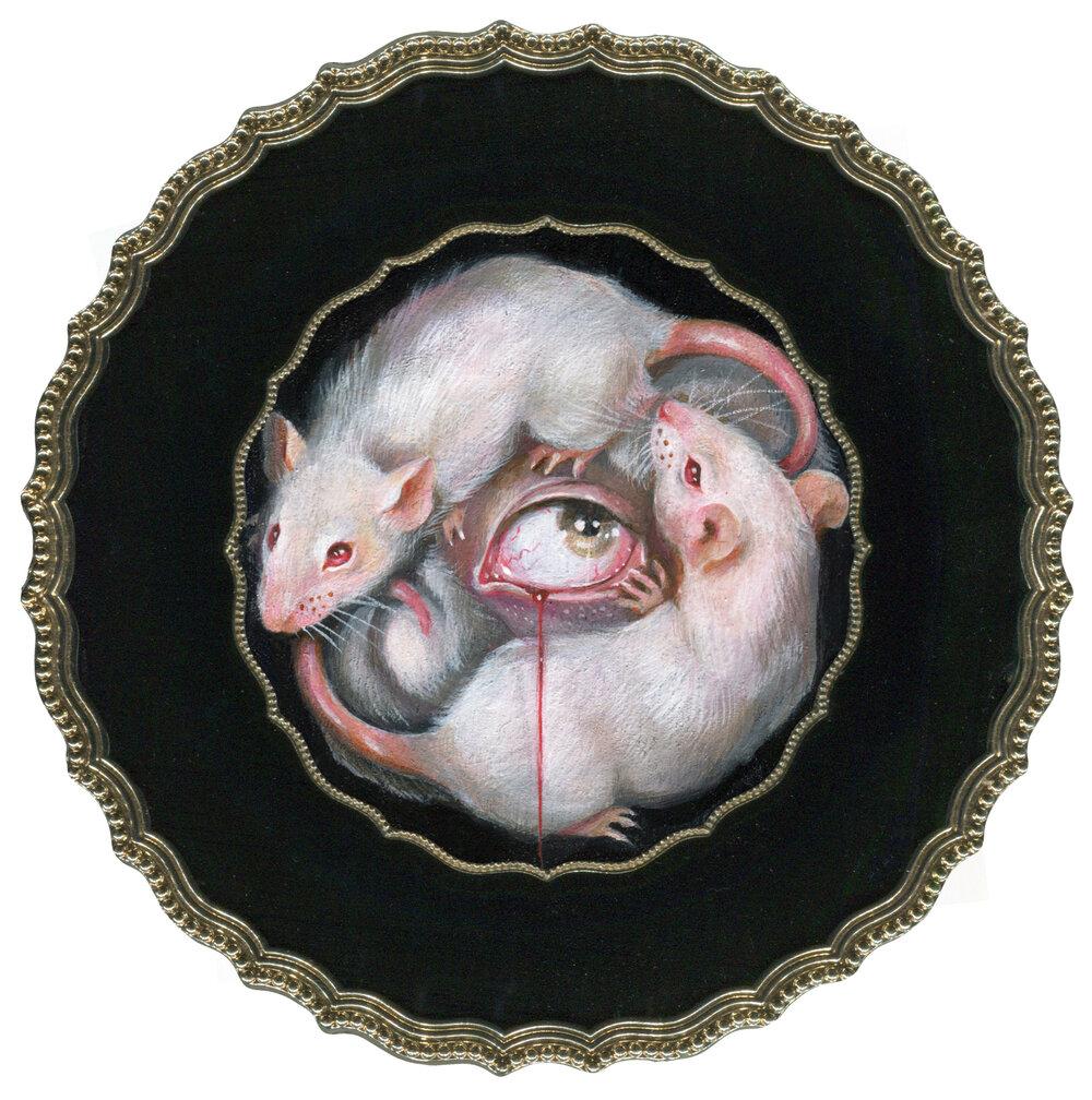 """""""Mice and Eye"""""""