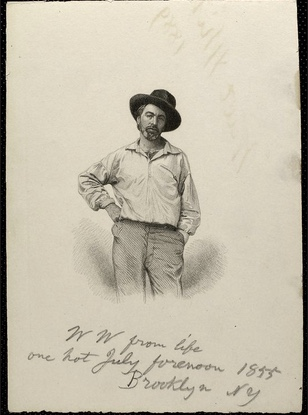 Engraved frontispiece from  Leaves of Grass , based on a daguerreotype of Walt Whitman made by artist Gabriel Harrison