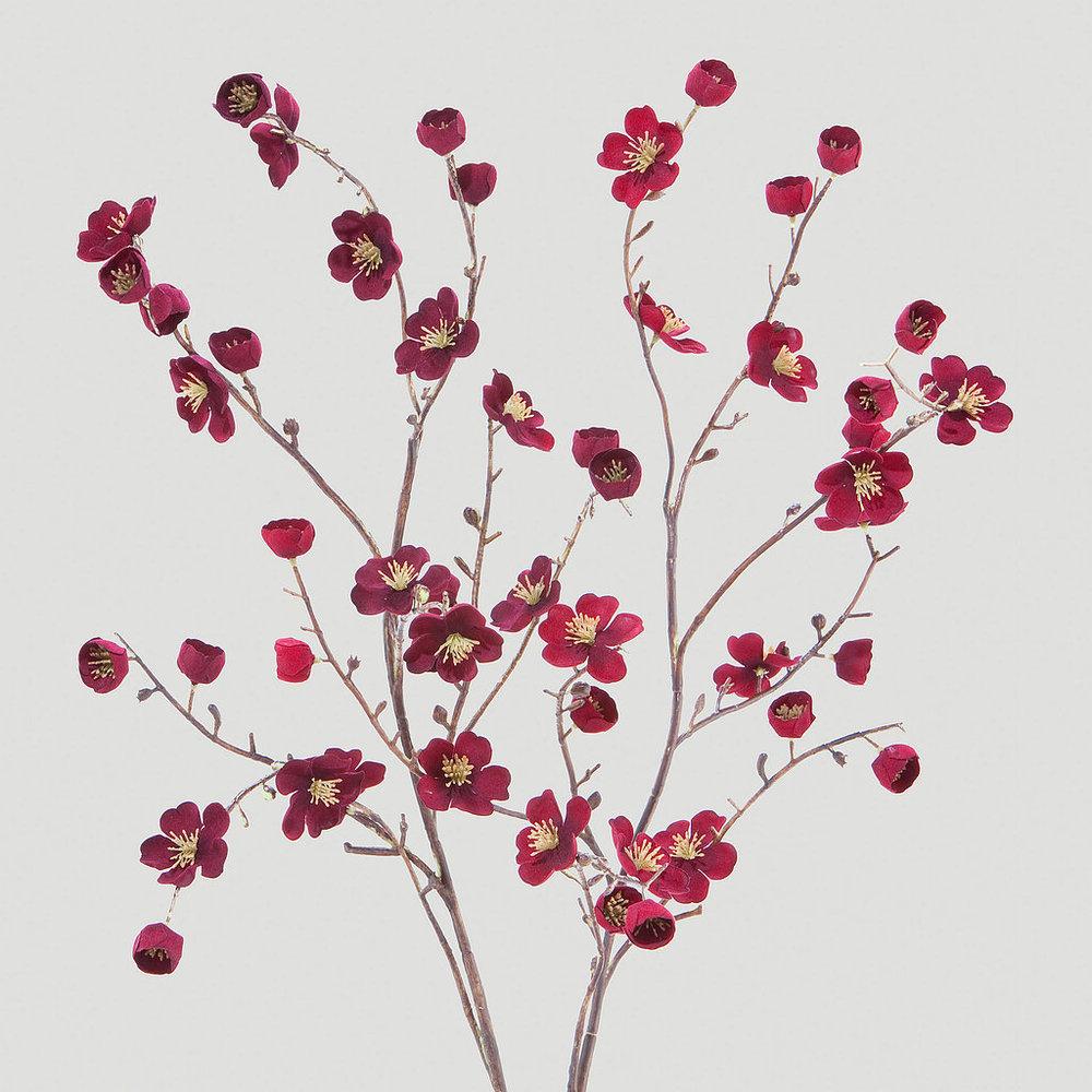 Velvet Blossoms - World Market