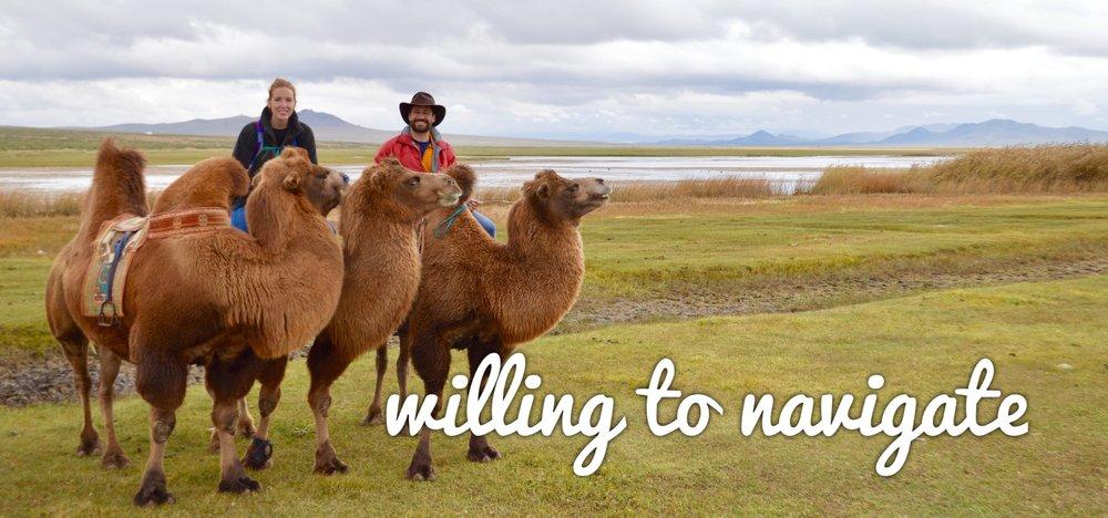 wtn.on.camels