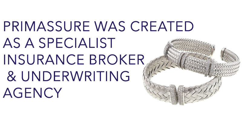 Primassure was created as a specialist insurance broker and underwriting agency