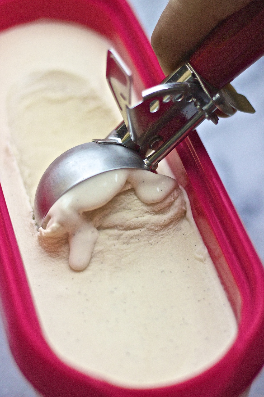 Dairy Free Vanilla Ice Cream | Kneading Home