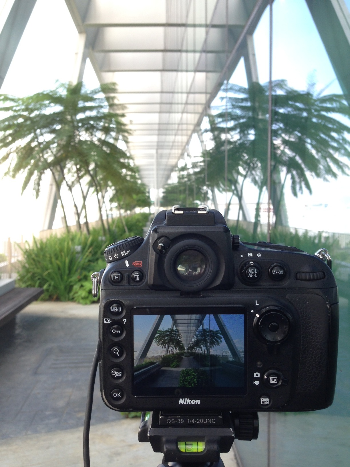 Great Architecture Shoot today at Changi Business Park