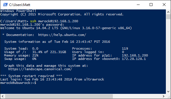SSH in a native powershell window. I prefer to use console2 and enjoy judging others who don't (conemu is good too).