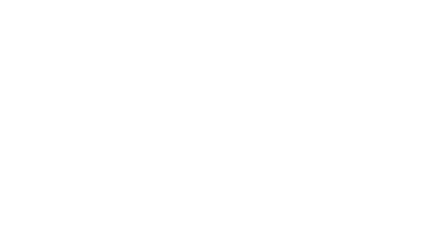 Visual revolutionaries