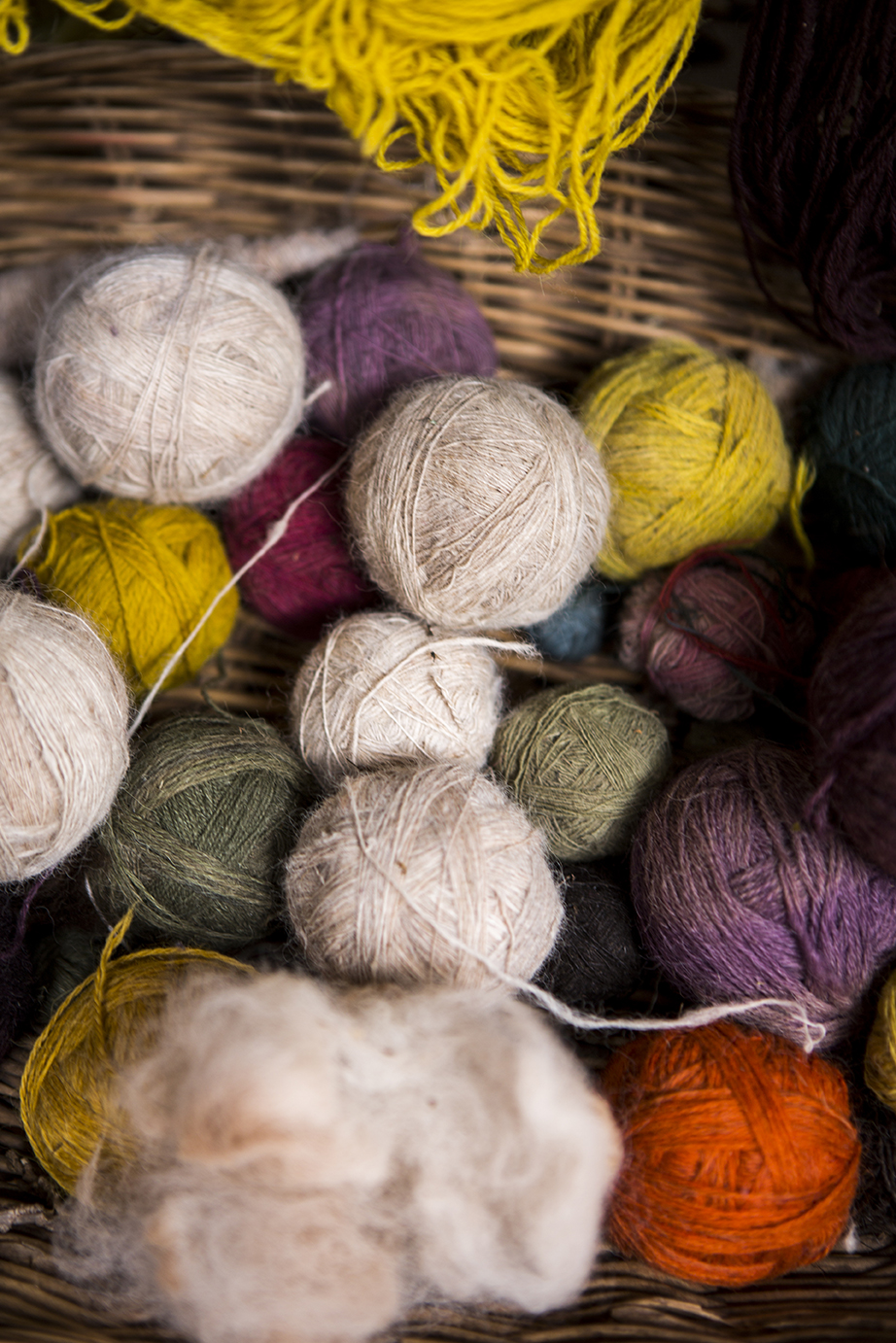 Awana Kancha alpaca farm - threads_12.jpg