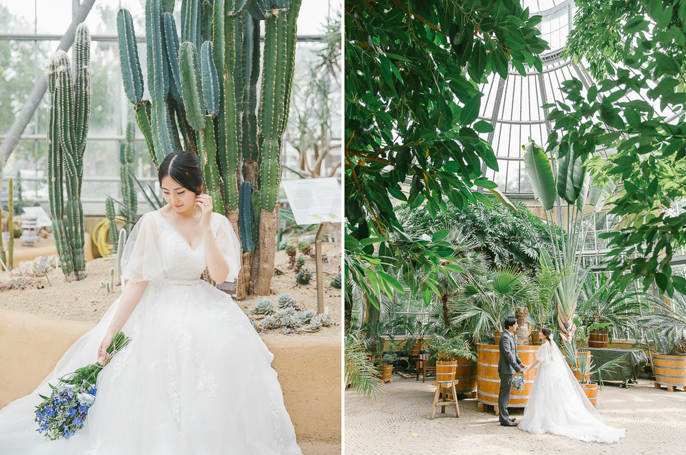 romantische-trouwfotograaf-de-hortus-botanicus-amsterdam